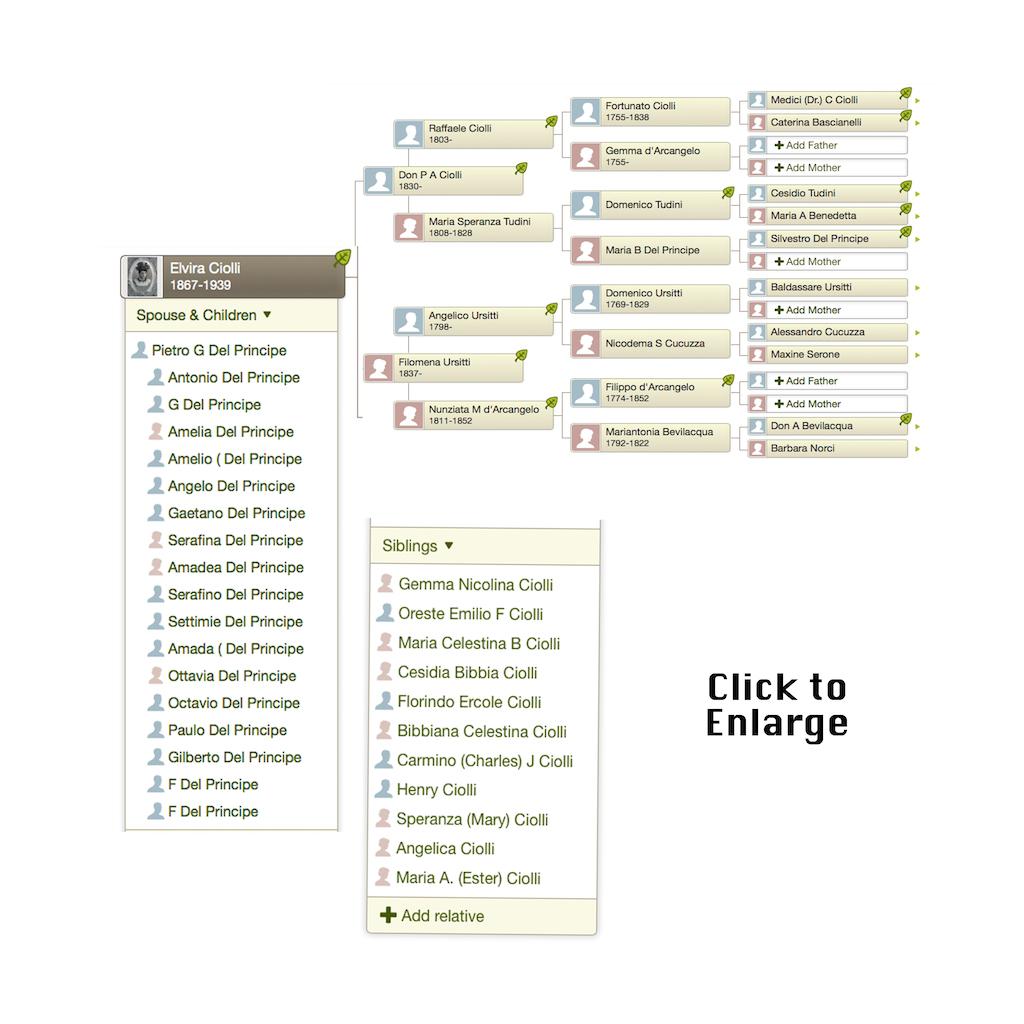 Ciolli Family Tree